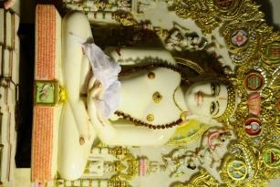 Chennai Sumatinath Pratishtha Mahotsav10